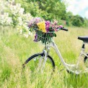 Tipps zu Routenplaner Fahrrad